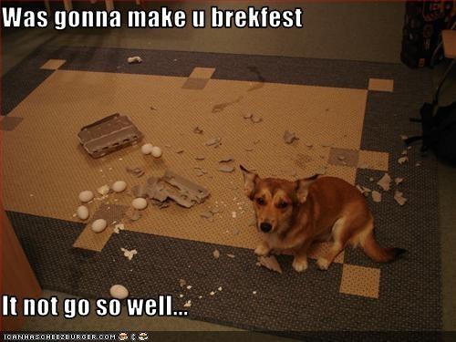 Was gonna make u brekfest  It not go so well...