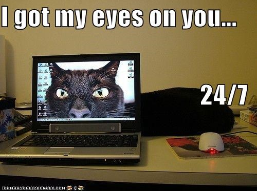 I got my eyes on you... 24/7