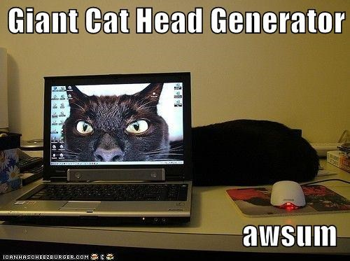 Giant Cat Head Generator  awsum