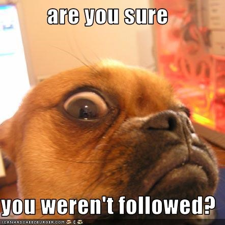are you sure   you weren't followed?