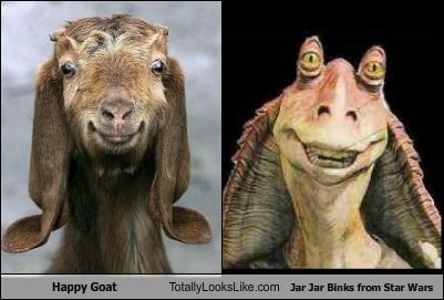 Happy Goat Totally Looks Like Jar Jar Binks from Star Wars
