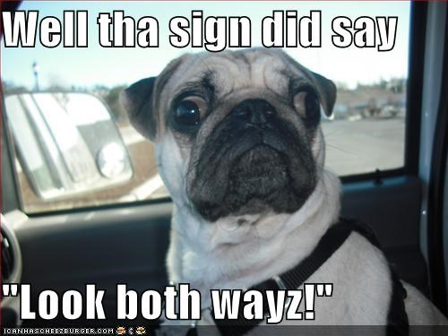 "Well tha sign did say  ""Look both wayz!"""