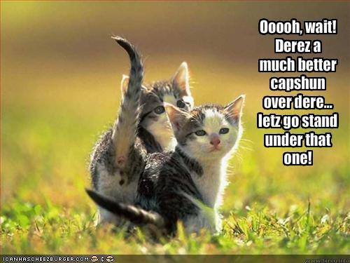 Ooooh, wait! Derez a much better capshun over dere... letz go stand under that one!