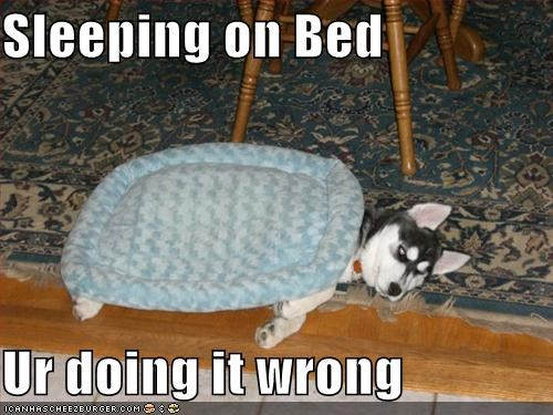 Sleeping on Bed  Ur doing it wrong