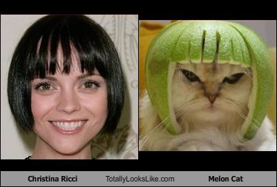Christina Ricci Totally Looks Like Melon Cat