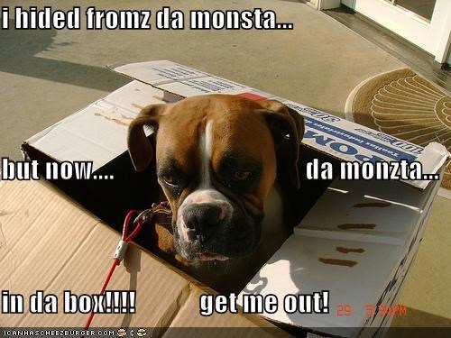 i hided fromz da monsta... but now....                                    da monzta... in da box!!!!            get me out!