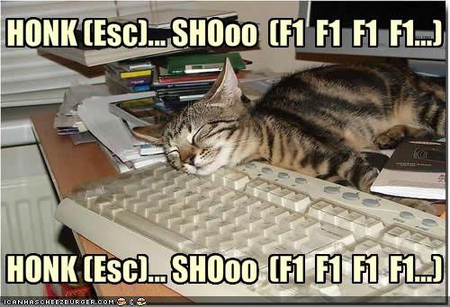 HONK (Esc)... SHOoo  (F1  F1  F1  F1...)HONK (Esc)... SHOoo  (F1  F1  F1  F1...)