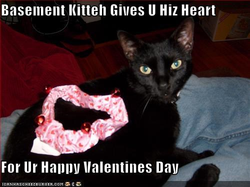 Basement Kitteh Gives U Hiz Heart  For Ur Happy Valentines Day