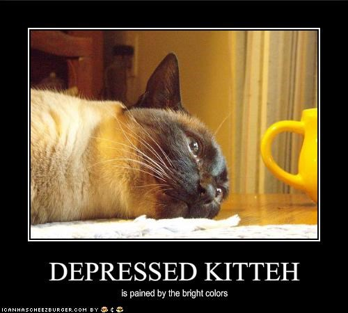 DEPRESSED KITTEH