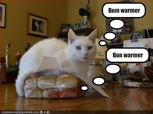 Bum warmer