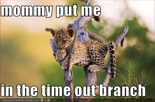 mommy put me   in the time out branch