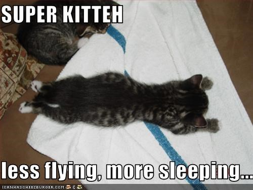 SUPER KITTEH  less flying, more sleeping...