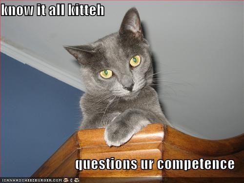 know it all kitteh  questions ur competence