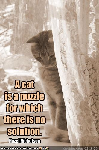 A cat is a puzzle for which there is no solution.