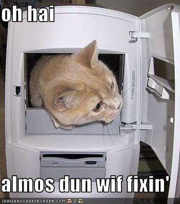 oh hai  almos dun wif fixin'