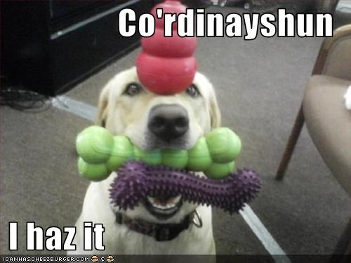 Co'rdinayshun   I haz it