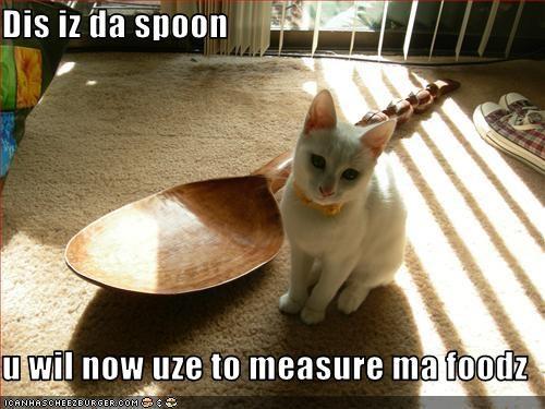 fud,instructions,spoon