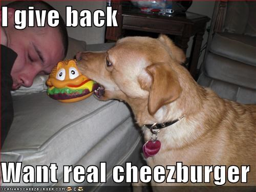 I give back  Want real cheezburger