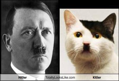 Hitler Totally Looks Like Kitler