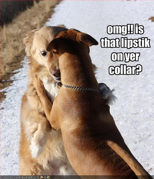 omg!! is that lipstik on yer collar?