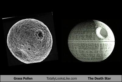 cells,science,star wars,The Death Star