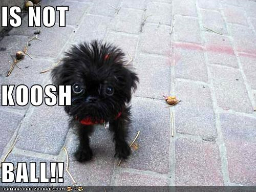 IS NOT KOOSH  BALL!!