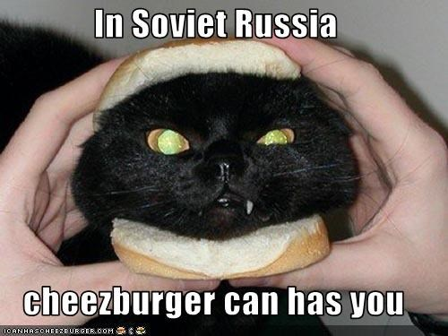 In Soviet Russia  cheezburger can has you