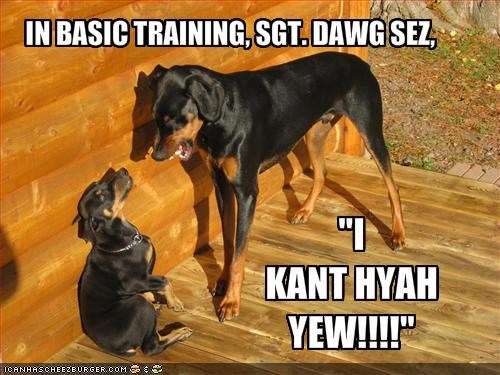 IN BASIC TRAINING, SGT. DAWG SEZ,