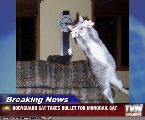 bullets,monorail cat,security system