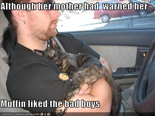 Although her mother had  warned her  Muffin liked the bad boys