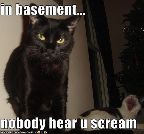in basement...  nobody hear u scream