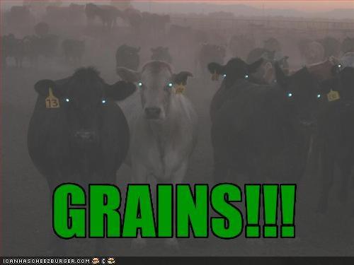 GRAINS!!!