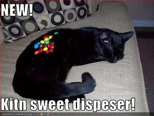 NEW!  Kitn sweet dispeser!