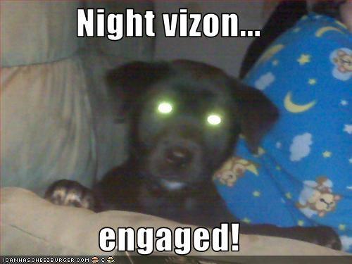 Night vizon...  engaged!