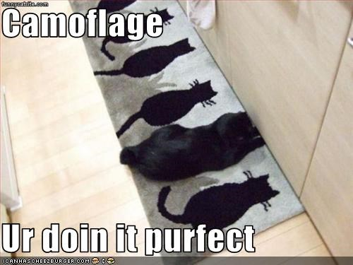 Camoflage  Ur doin it purfect