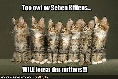 Too owt ov Seben Kittens...