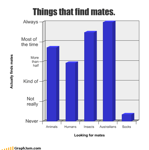 animals,Australians,humans,insect,socks