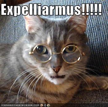 Expelliarmus!!!!!