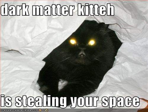 dark matter kitteh  is stealing your space