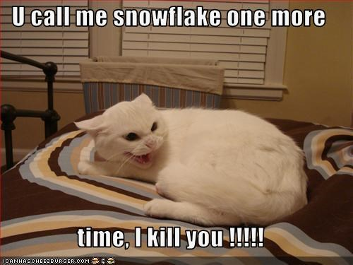 U call me snowflake one more   time, I kill you !!!!!