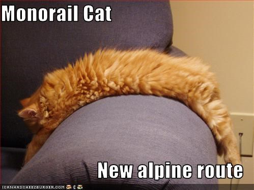 Monorail Cat  New alpine route