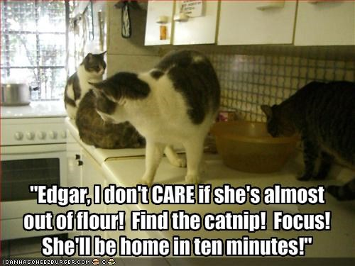 """Edgar, I don't CARE if she's almost 