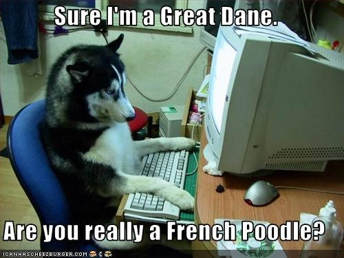Sure I'm a Great Dane.  Are you really a French Poodle?