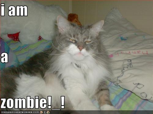 i am a zombie!_!