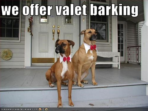 we offer valet barking