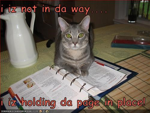 i iz not in da way....  i iz holding da page in place!
