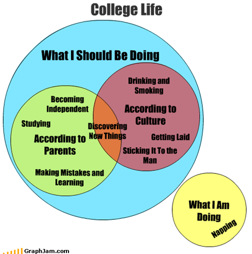 college,culture,discovery,drinking,independent,learning,mistakes,napping,parents,sleeping,smoking,study