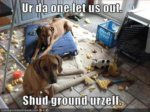 Ur da one let us out.  Shud ground urzelf.