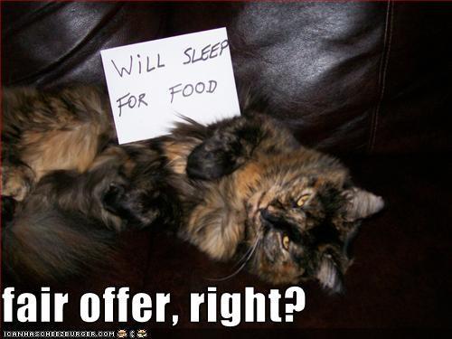 fair offer, right?