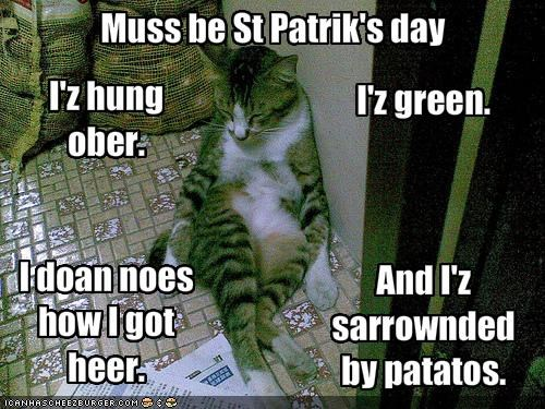 Muss be St Patrik's day